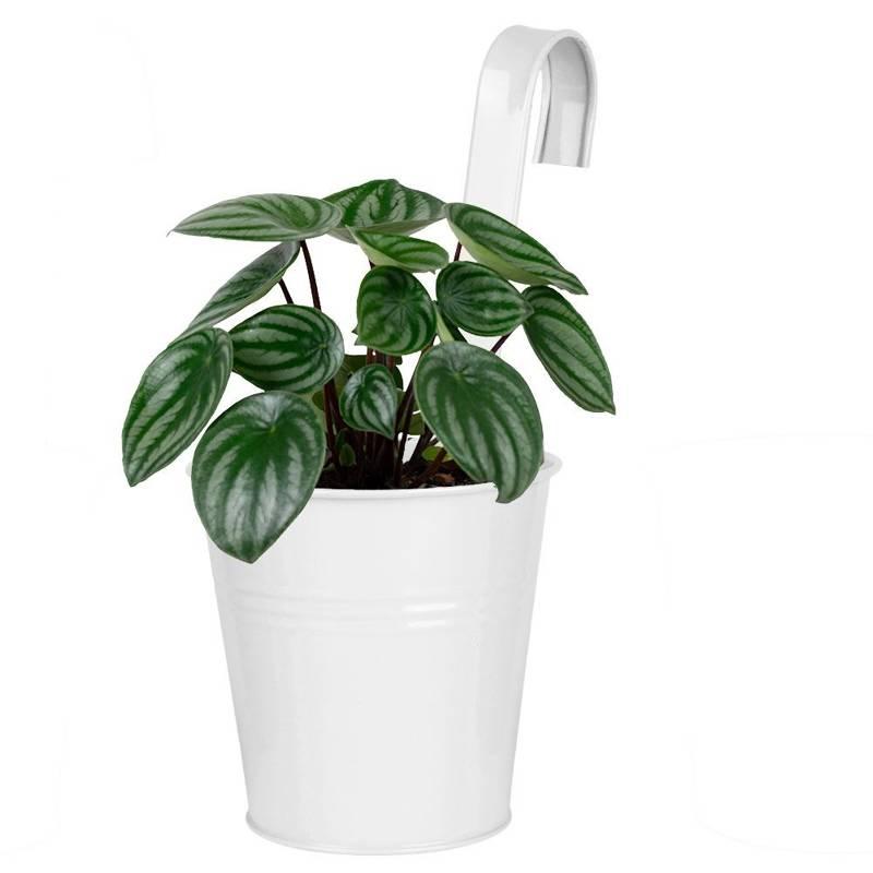 Ghiveci de flori, balcon, terasă, agățat, suport pentru ghiveci de flori, alb